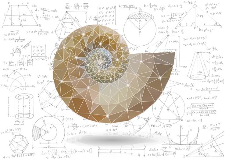 math-cover