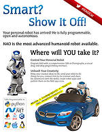 NAO car white paper
