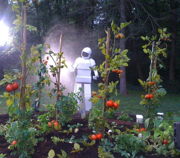 Robot_taking_care_of_garden