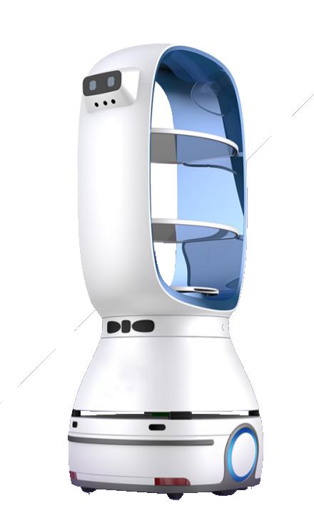 ALF ROBOT-1