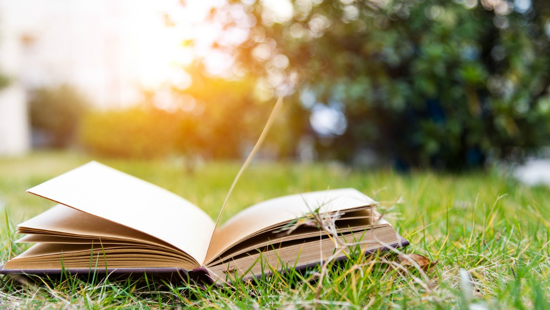 Book-Summer-STEM