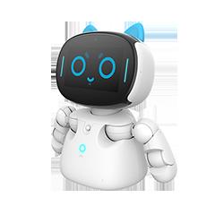 Kebbi Robot-1