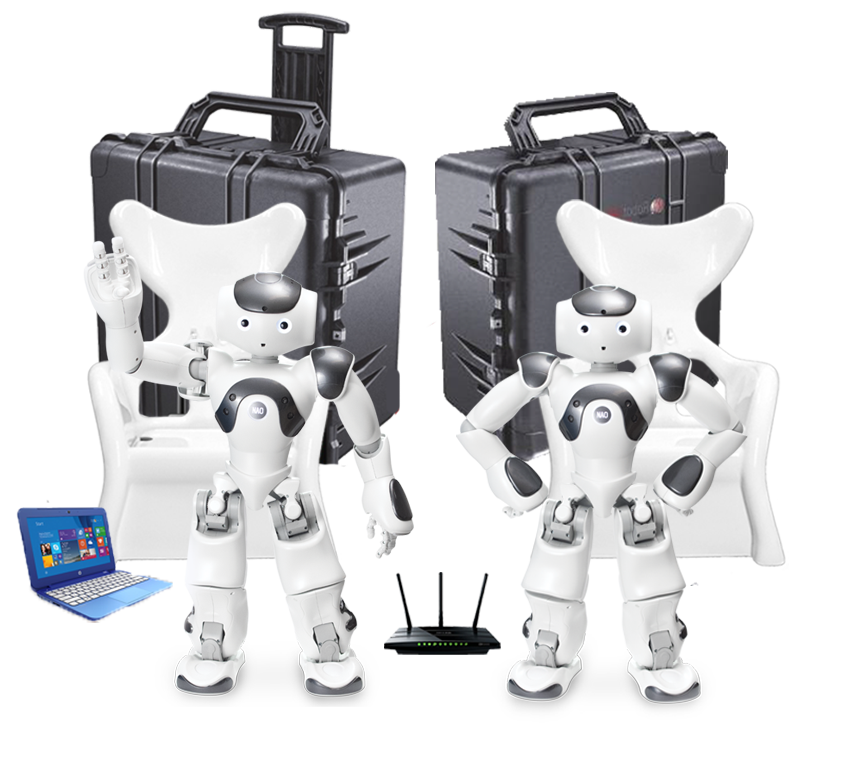 NAO Humanoid Robotics Lab- NEW-DS-grey