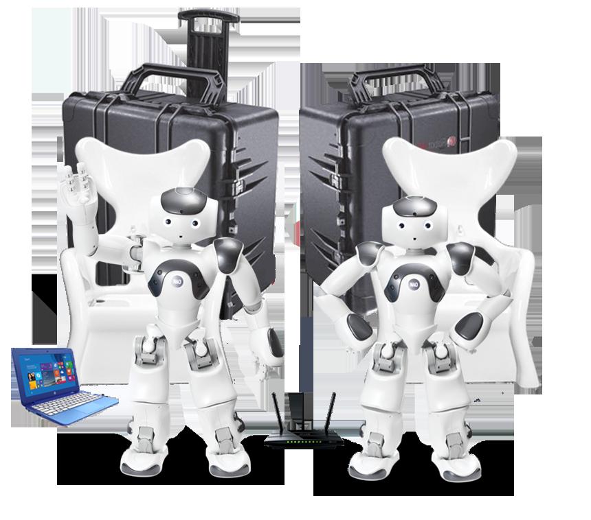 NAO Humanoid Robotics Lab- NEW-DS-grey