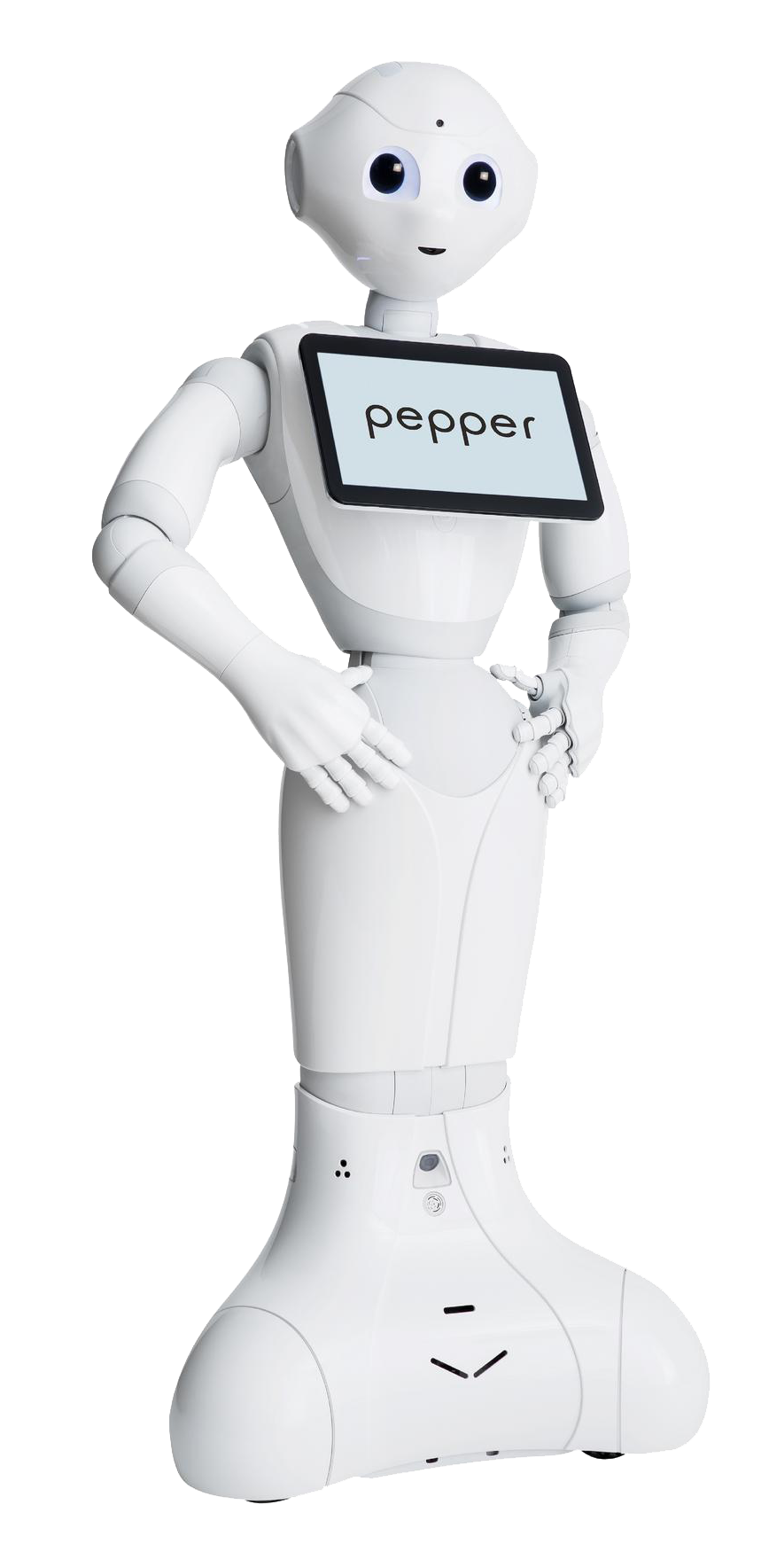 Pepper Research and Coding.png
