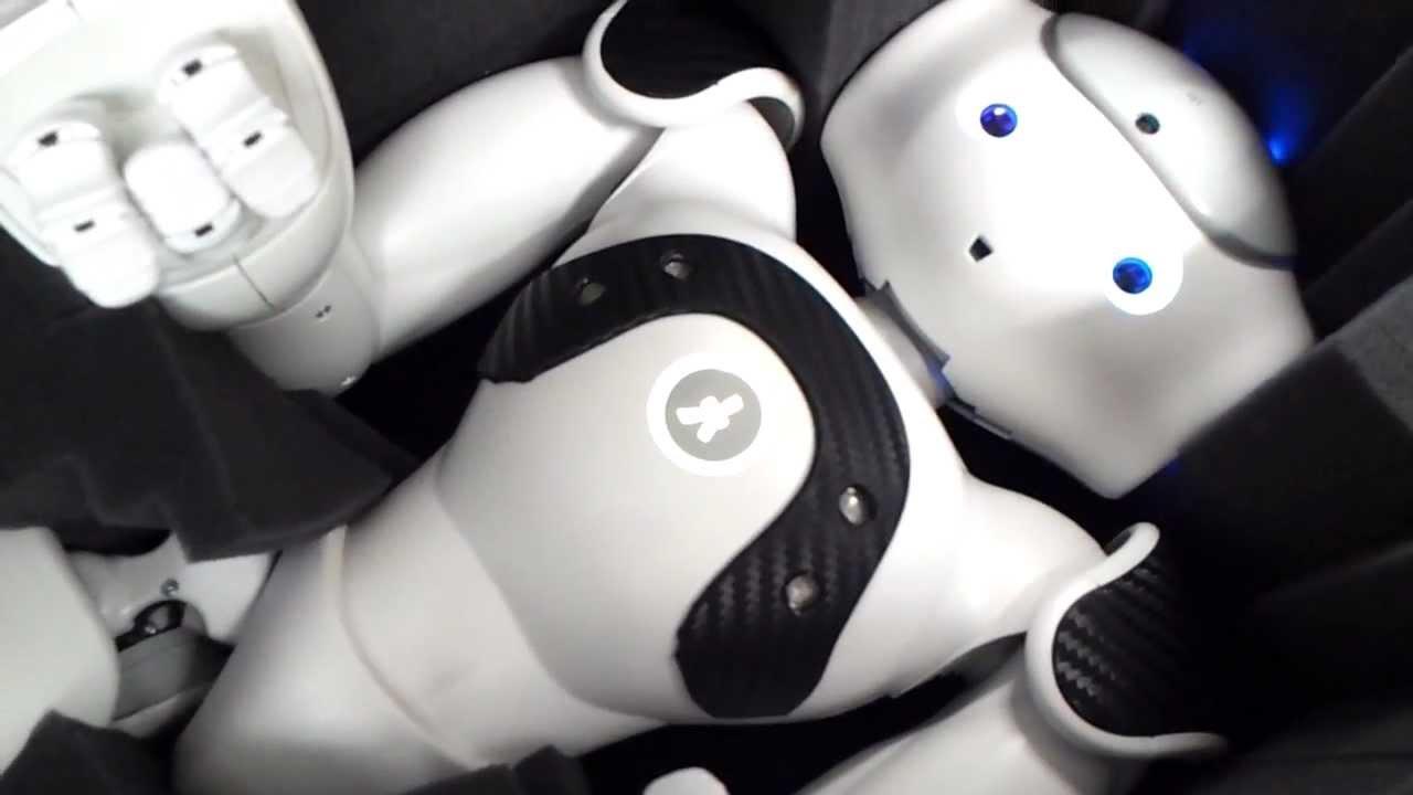 Reset Nao Robot-1.jpg