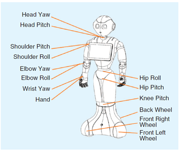 A Mass-Produced Sociable Humanoid Robot: Pepper: The First