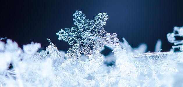 snowflake_main