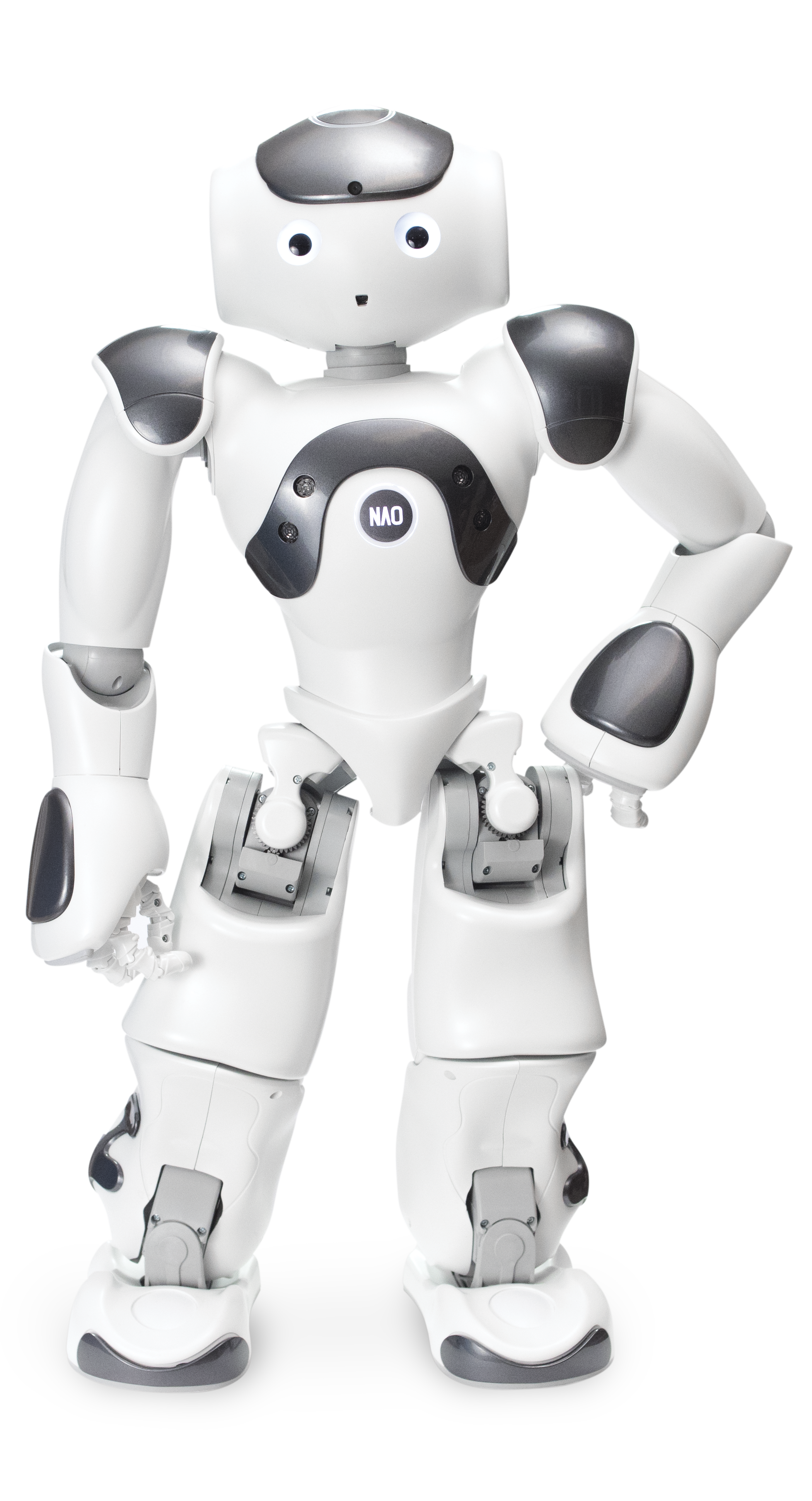 Award Winning Educational Robotics Programs That Are Smart