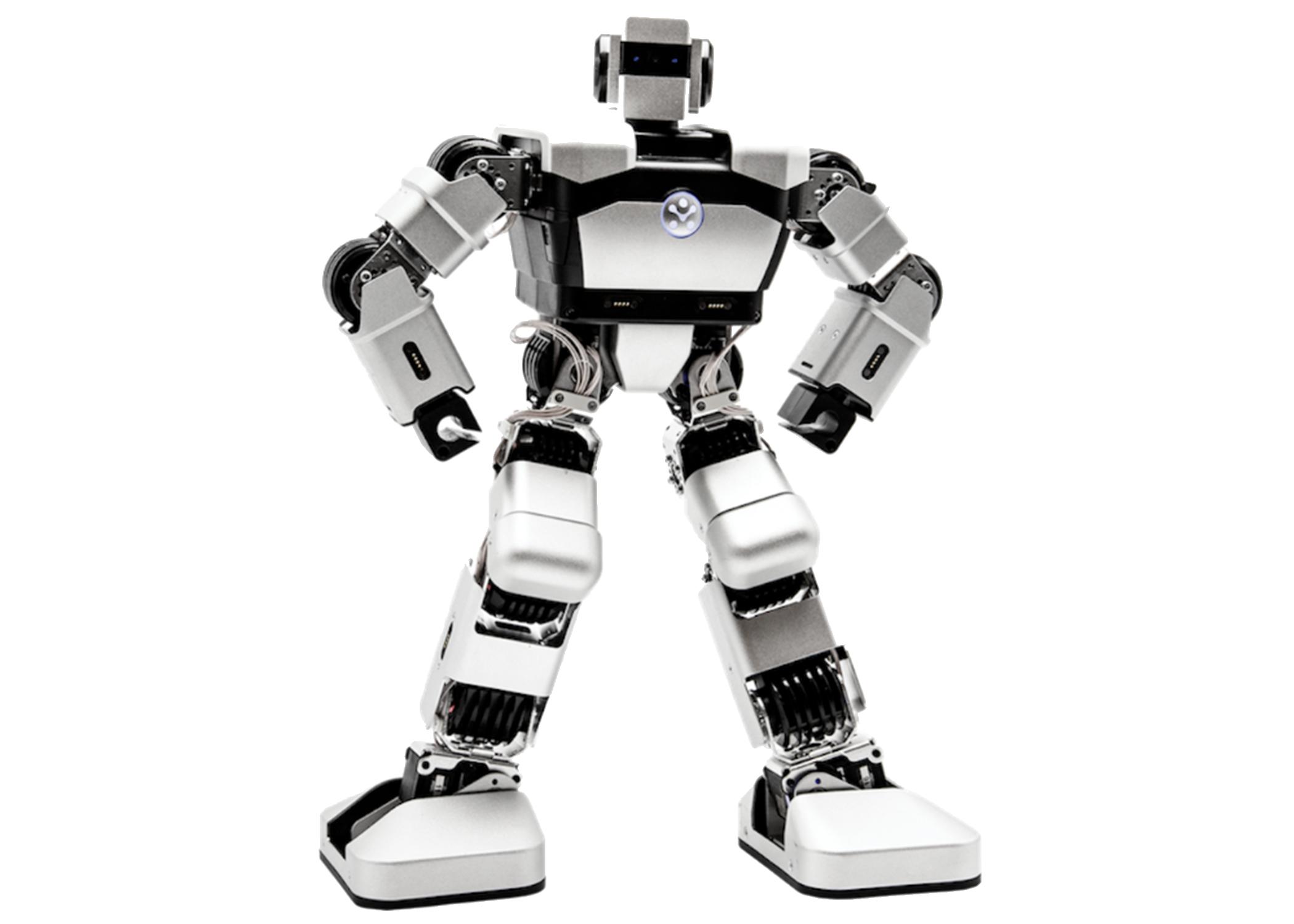 Yanshee robot